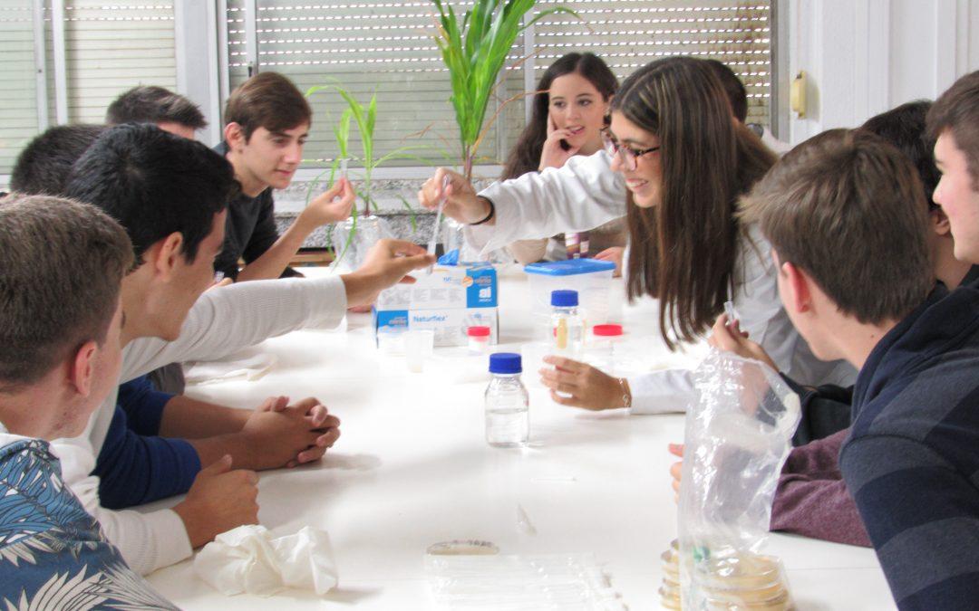 QUIFIBIOMAT 2015. Primero de Bachillerato de Ciencias